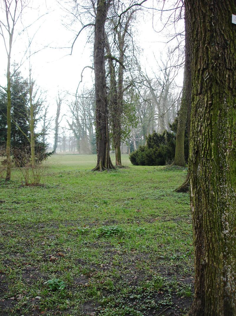 o.T. (Schloßpark Wolfsburg)-2009